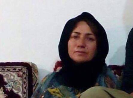 Parwana Hossein Panahi and her husband were arrested